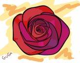 Desenho Flor de rosa pintado por amauri