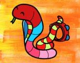 Cobra com tamborin