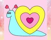 Caracol coração