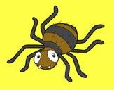 Aranha infantil