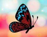 Desenho Borboleta asas normais pintado por caudia