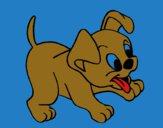 Desenho Cachorro pintado por Nilton27