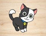Desenho Gato doméstico pintado por ImShampoo