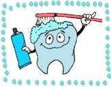 Dentes a serem limpos