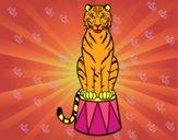 Desenho Tigre do circo pintado por BARBA1