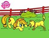 Applejack i Winona