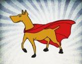 Cão super-herói