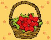 Desenho Cesta de flores 2 pintado por DaniBello