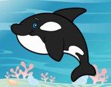 Desenho Orca jovem pintado por ImShampoo