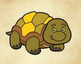 Desenho Tartaruga de terra pintado por ImShampoo