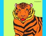 Desenho Tigre pintado por jabuti