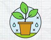 Desenho Agricultura biológica pintado por Andressaxp