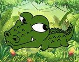 Crocodilo pequeno
