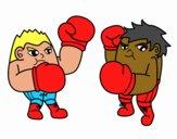 Luta de boxe