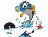 Contaminação marinha
