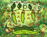 Algumas ervilhas