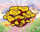 Desenho Cogumelo maitake pintado por mcastrode