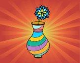 Crisântemo em um vaso