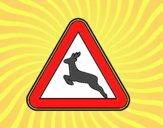 Passagem de animais selvagens