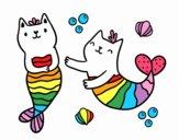 Gatos da sereia