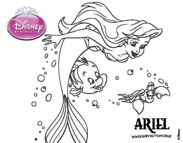 Ariel, Flunder E Sebastião