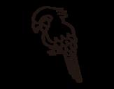 Desenho de Arara para colorear