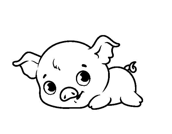 Desenho de Baby piggy para Colorir