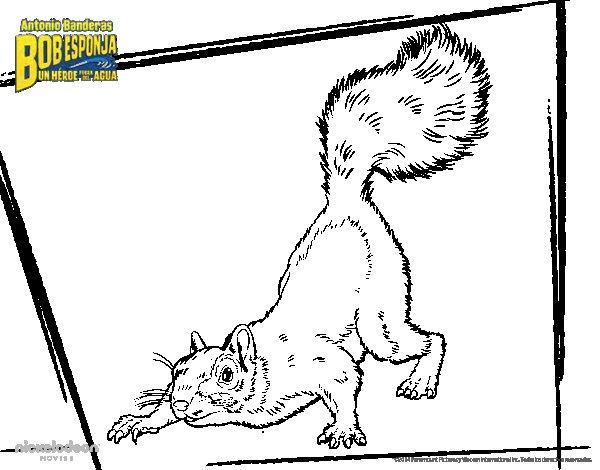 Desenho de Bob Esponja - A Esquilo para o ataque para Colorir