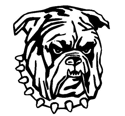 Desenho de Bull dog para Colorir
