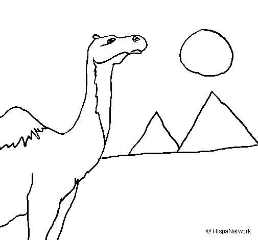 Desenho de Camelo para Colorir