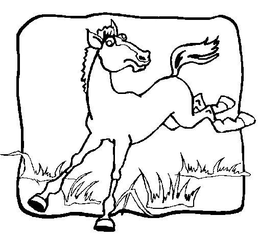 Desenho de Cavalo a dar um coice para Colorir