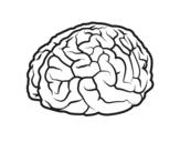 Desenho de Cérebro para colorear
