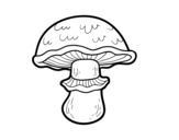 Desenho de Champignon portobello para colorear