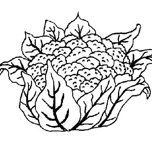Desenho de Couve-flor para Colorir