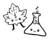 Desenho de Curso de ciências para colorear