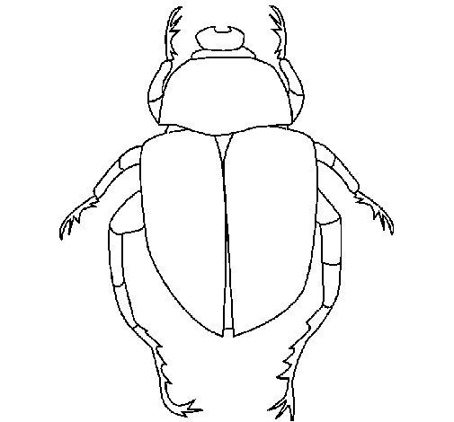 Desenho de Escaravelho para Colorir
