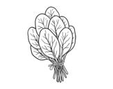 Desenho de Espinafre para colorear