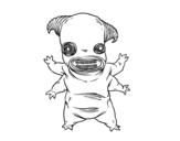 Desenho de Fauno monstro para colorear
