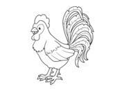 Desenho de Galo a quinta para colorear
