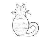 Desenho de Gato de volta para colorear