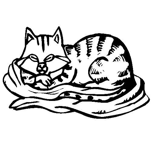 Desenho de Gato na sua cama para Colorir