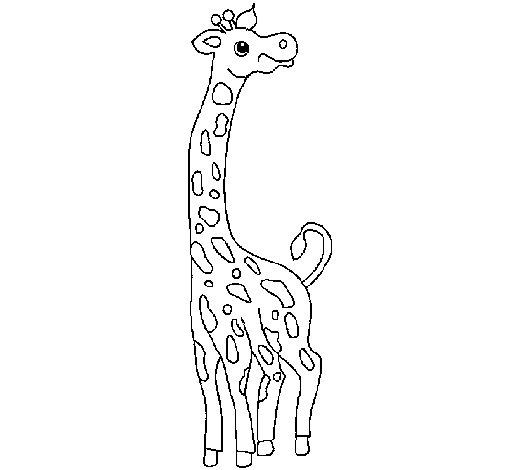 Desenho de Girafa para Colorir