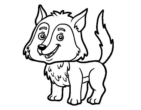 Desenho de Lobo jovem para Colorir