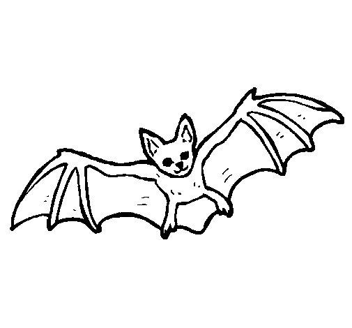 Desenho de Morcego a voar para Colorir
