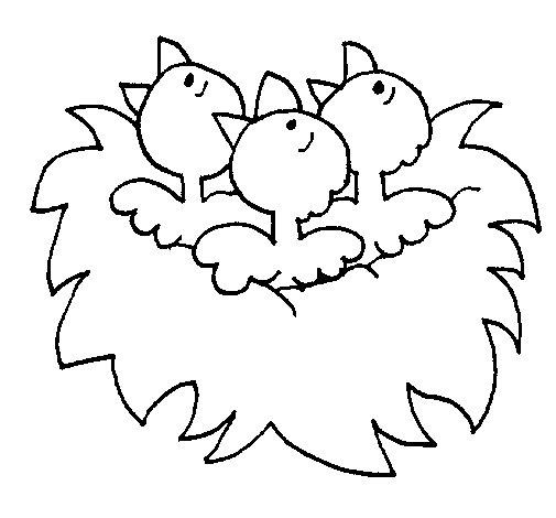 Desenho de Ninho de passaritos para Colorir