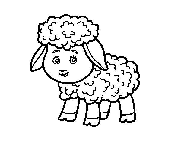 Desenho de Pequena Ovelha para Colorir