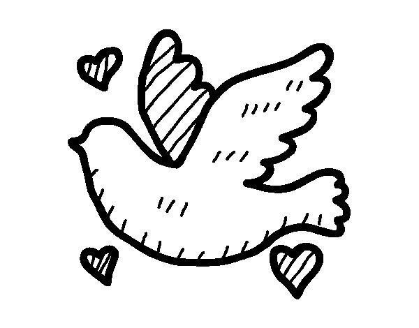 Desenho de Pomba do amor para Colorir