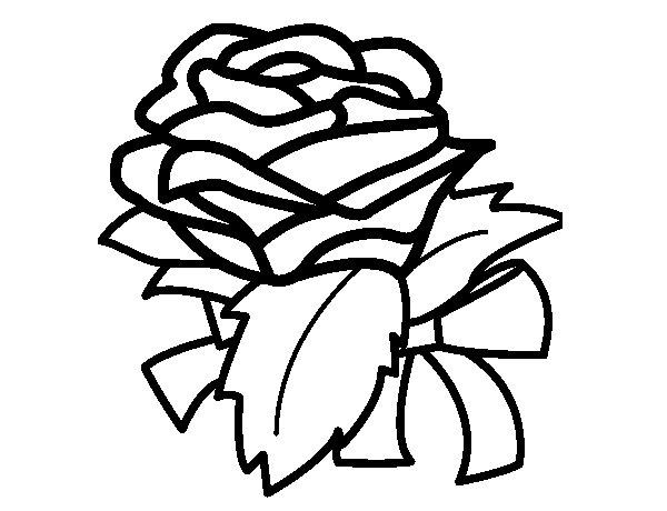 Desenho de Rosa, flor para Colorir