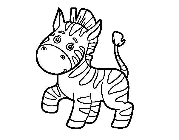 Desenho de Uma zebra africana para Colorir