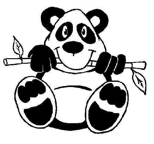Desenho de Urso panda para Colorir
